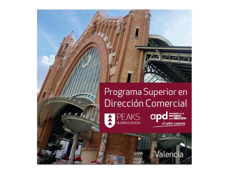 Folleto Programa Superior Dirección Comercial